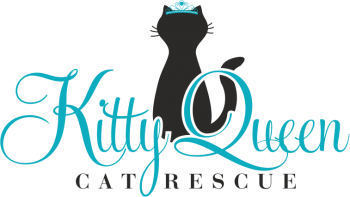 Kitty Queen Cat Rescue